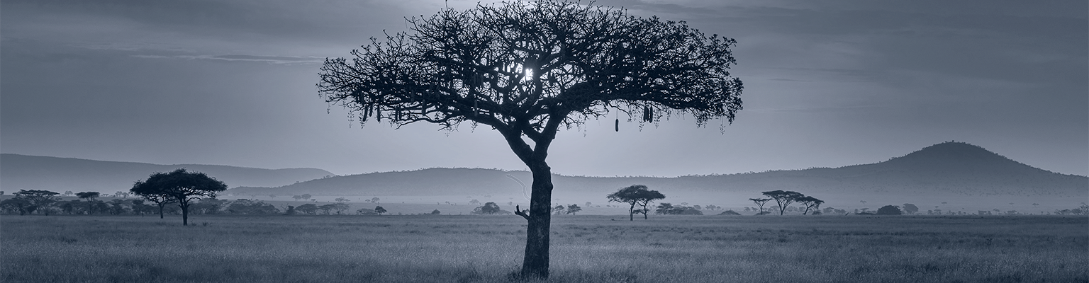 pan-africa-debt-fund-banner
